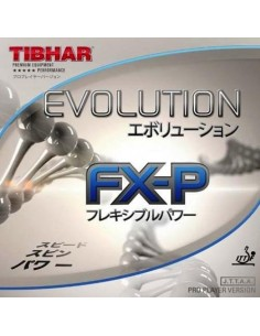 Rubber Tibhar Evolution FX-P